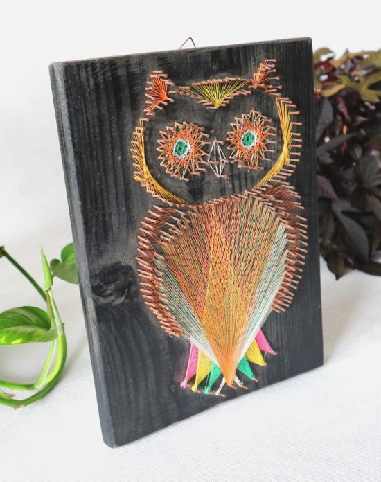 Vintage owl string picture